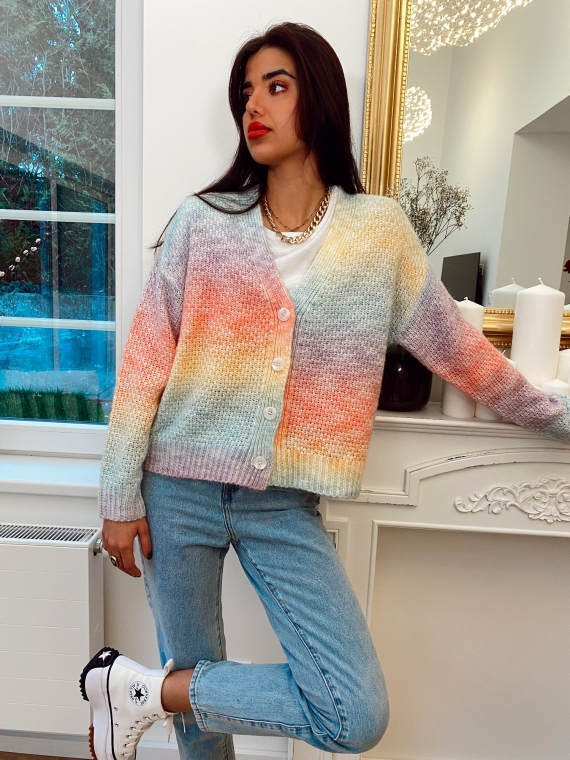 Multicolored mesh vest MARCEL